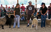 Garden State Sheep Breeders Show